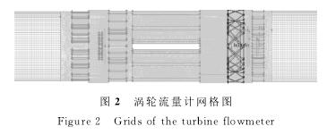 图2 涡轮流量计网格图