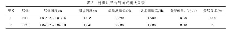 表 2 提捞井产出剖面点测成果表