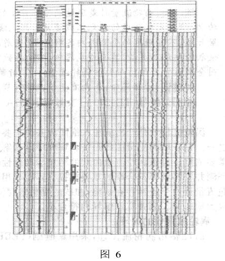 图 6是中原油田测井公司在塔河油田进行的一口产液剖面测井图