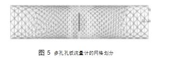 图 5多孔孔板流量计的网格划分