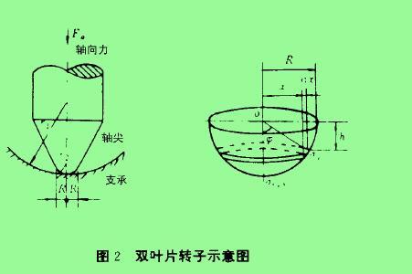 图2双叶片转子示愈图