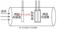 持水率对热式流量计测量影响的理论分析