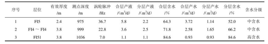 表2 产液剖面分层测试找水成果表